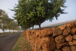 Gravel Hill Wall